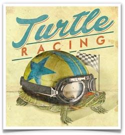 11-turtles